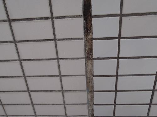 タイル外壁修繕工事[浜松市南区の加藤塗装] 外壁塗装、屋根塗装