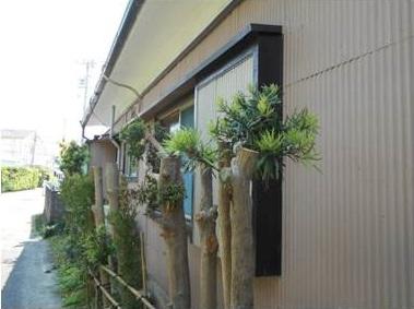 無料見積もりご依頼→外壁診断調査[浜松市南区の加藤塗装] 外壁塗装、屋根塗装